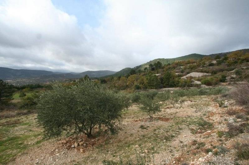 France property for sale in Soubes, Languedoc-Roussillon